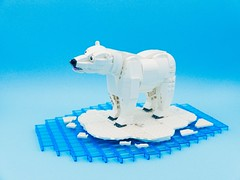 The Beauty Of Arctic Circle. (vincentkiew) Tags: ocean climatechange warming global fish love arctic polar bear lego polarbear