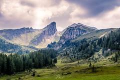 Giau Pass, Dolomites, Italy (pixval1) Tags: italia italy dolomiti dolomites passo pass giau cortina mountains peak lield pine trees canon eos 6d 24105