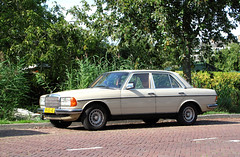 1980 Mercedes-Benz 280 E (W123) (rvandermaar) Tags: 1980 mercedesbenz 280 e w123 mercedesbenzw123 mercedesbenz280e mercedesw123 mercedes280e mercedes sidecode6 19xsvs