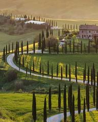 Summer morning like this! 😍 . . . #like #follow #share #comment #subscribe #castelnuovodellabate #montalcino #borghettomontalcino #tuscany #tuscanygram #italy #italy #italia #santantimo #valdorcia #travel #travelblogger #travelphotography #trav (borghettob) Tags: valdorcia tuscany castelnuovodellabate holiday travelphotography santantimo italia montalcino travelholic share igtravel travelgram tuscanygram italy travelling discover instatraveling like subscribe follow borghettomontalcino travelblogger instago travels instatravel comment travel bedandbreakfast