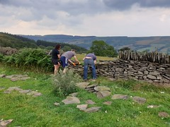 Merthyr, Countryside Guardians, Dry Stone Walling, Merthyr Vale, July 2019 (Keep Wales Tidy) Tags: countryside merthyr keepwalestidy training skills guardians drystonewalling accredited landbased
