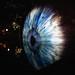 IRIS (Blue, Roving)