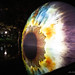 IRIS: 3D eyeball