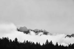 Renon (rainerneumann831) Tags: bw blackandwhite monochrome urban ©rainerneumann renon ritten berge landschaft rainerneumann831 wolken bäume