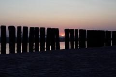 Sonnenuntergang / Sunset in Holland (Joerg Dylewski) Tags: sommer sonne sonnenuntergang sony sunset sun summer alpha 6300 holland netherland abend beach breskens clouds himmel holz sky landscape landschaftspark landschaft meer natur nature northsea nordsee