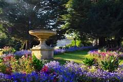 Victoria Park, Bath (Nige H (Thanks for 25m views)) Tags: nature flowers city park bath cityofbath victoriapark england royalcrescent