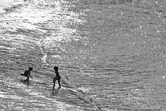 Últimos días de verano (Kasabox) Tags: verano summer estiu bn bw black white blanco negro people niños child agua water mediterraneo mediterranean mar sea plya beach silueta silhouette fiesta vacaciones holyday