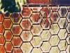 Kandinsky Hexagons (byzantiumbooks) Tags: vinci hexagons hereios we'rehere