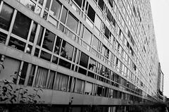 Barre d'immeuble  -  Block of building (Philippe Haumesser (+ 8000 000 view)) Tags: bâtiment immeuble building noiretblanc blackandwhite monochrome paris montparnasse nikond7000 nikopn d7000 reflex 2019 ville city