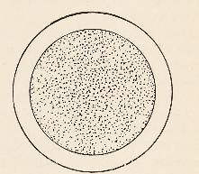 This image is taken from Page 505 of Principles of bio-chemistry for students of medicine, agriculture and related sciences
