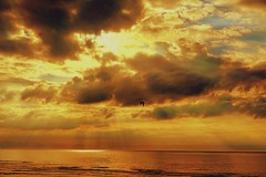 Water heat wave HCT (7 Blue Nights) Tags: water crazytuesday paysage landscape clouds heatwave yellow orange weather sky burning nature outside ciel seascape dawn sunset beach light sun sea summer gold