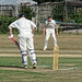 Southwater CC v. Chichester Priory Park CC at Southwater, West Sussex, England 014