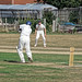 Southwater CC v. Chichester Priory Park CC at Southwater, West Sussex, England 003