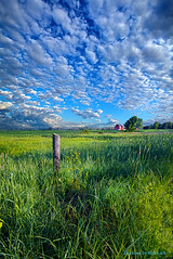 Fields and Dreams (Phil~Koch) Tags: life mood emotions country rural outdoors colors living heaven weather horizons lines landscape art meadow sky sunset clouds scenic vertical photography office portrait serene morning dawn nature natural environment inspired inspirational season beautiful hope love joy dramatic unity trending popular canon fineart arts shadow sun sunrise light peace wisconsin shadows endless earth sunlight horizon pastel summer green farm barn fencepost