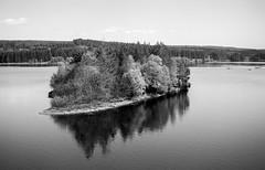 Kielder - 14/05/18 (CamShaw74) Tags: kielder forest forestry commission film morris minor lcv canon eos50e iso50 ilford panf