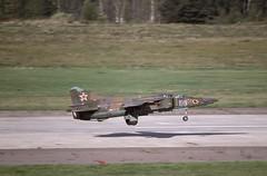 MiG-23UB Zhukovsky (Rob Schleiffert) Tags: mig mig23 floger zhukovsky russianairforce