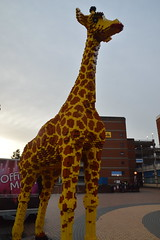 Giraffe from Lego (CoasterMadMatt) Tags: park sculpture amusement model lego centre models structure theme discovery legoland themeparks discoverycentre indoorthemepark legomodels englishthemeparks themeparksinengland legolandbirmingham legolanddiscoverycentrebirmingham legolanddiscoverycentrebirmingham2019 giraffe uk greatbritain winter england west photography march birmingham photos unitedkingdom britain photographs gb westmidlands attraction attractions midlands brindleyplace nikond3200 2019 themidlands merlinentertainments coastermadmatt coastermadmattphotography march2019 winter2019 legolandparks europe birminghamattractions