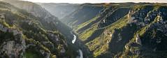 Roc des Hourtous - Gorges du Tarn (penelope64) Tags: lozère cévennes france nature olympusem1 olympus35100f2 panoramique paysage gorgesdutarn