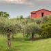 At Osteria L'Acquolina, Tuscany
