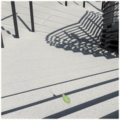 The fallen leaf (Kimmo Räisänen) Tags: leaf stairs staircase minimalism minimalist minimalistic mobilephonephotography samsunggalaxys9plus squareformat square 11 66