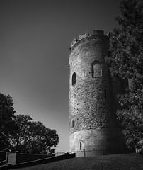 Tower of Kamyenyets / Каменецкая башня (Boris Kukushkin) Tags: tower bricks bw pano panorama hugin darktable belarus kamenets kamyenyets white башня вежа белая каменец чб беларусь панорама