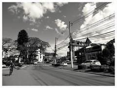 Cena Urbana (Claudio Arriens) Tags: pb bw novapetrópolis riograndedosul urbano brasil rua street serragaúcha southamerica américadosul