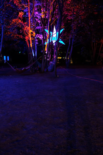 Lights and Hammocks