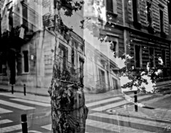 Doble carrer Industria / Double street exposure (SBA73) Tags: sabadell carrer street calle rue dobleexposició doubleexposure 4x5 graflex anniversary speedgraphic usaaf c3 groundcamera military army kodak ektar ilford fp4 largeformat lf unintended