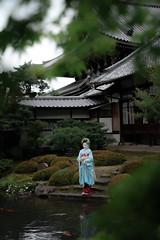 Maiko_20190630_121_4 (Maiko & Geiko) Tags: 20190630 kouunji temple kanohisa kyoto maiko 舞妓 光雲寺 叶久 京都 叶家 kanoya ksumika