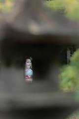 Maiko_20190630_121_9 (Maiko & Geiko) Tags: 20190630 kouunji temple kanohisa kyoto maiko 舞妓 光雲寺 叶久 京都 叶家 kanoya ksumika