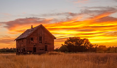 Old Homestead In Emmett Valley (http://fineartamerica.com/profiles/robert-bales.ht) Tags: emmett facebook fineart flickr gemcounty haybales idaho land people photo photouploads places states sunsetorsunrise barn sunrise sunset house farm homestead ranch cattle barnwood fence butte squawbutte mountain idado landscape treasurevalley scenicbiway americaphotography valley idahophotography beautiful sensational spectacular magnificent surreal sublime magical spiritual inspiring canonshooter scenic wow stupendous superb building grass hay trees yellow blue robertbales sky railroad tracks panoramic pano