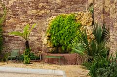 Alter Brunnen (KaAuenwasser) Tags: botanischergarten karlsruhe historisch alt pflanzen wasser betrieb stein felsen farne grün mauer gewächshaus gebäude