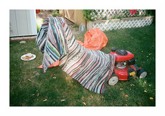 backyard, Willowdale (jellygeist) Tags: film analog olympusxa olympus 35mm rangefinder portra400 kodak manitoba