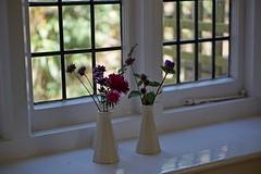 flowers in vases on the window sill - explored (quietpurplehaze07) Tags: gardenerscottage mottisfont windowsill vases flowers contrejour