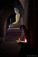 _DSC5905 (Carmen Coronado) Tags: myanmar monjes monks nikond850 nikon2470f28