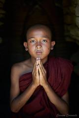 _DSC5638 (Carmen Coronado) Tags: myanmar monjes monks nikond850 nikon2470f28