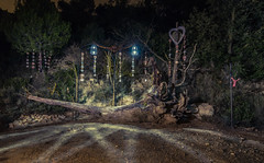 Lightpainting (Ricardo Pallejá) Tags: lightroom luces light lighpainting lost largaexposición nocturna night noche nikon d500 tokina1116 tarragona travel turismo catalonia cataluña catalunya street shades sombras