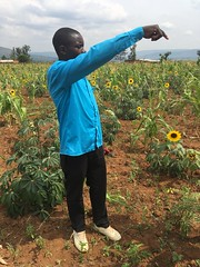 Joint Reflection, Learning and Monitoring Field Visits in Rwanda