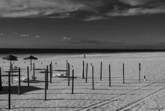 Pasos - Steps (ricardocarmonafdez) Tags: seascape beach playa shore seashore horizon mar sea cielo sky nubes clouds sunlight light shadows contraste contrast arena sand nikon d850 monocromo monochrome bw bn blackandwhite solitude people serenity