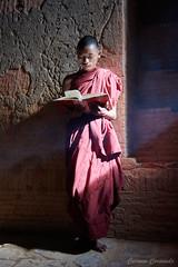 _DSC5856 (Carmen Coronado) Tags: myanmar monjes monks nikond850 nikon2470f28