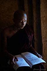 _DSC5864 (Carmen Coronado) Tags: myanmar monjes monks nikond850 nikon2470f28