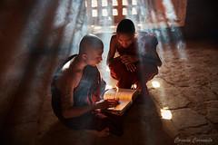 _DSC5934 (Carmen Coronado) Tags: myanmar monjes monks nikond850 nikon2470f28