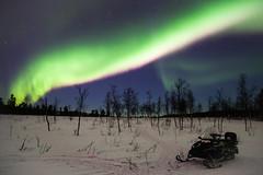 Aurora Borealis (bholmbom81) Tags: trees winter sky snow night stars sweden lappland kiruna auroraborealis norrbotten snowmobile bjornholmbom björnholmbom