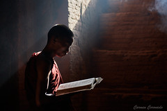 _DSC5872 (Carmen Coronado) Tags: myanmar monjes monks nikond850 nikon2470f28