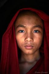 _DSC5666 (Carmen Coronado) Tags: myanmar monjes monks nikond850 nikon2470f28