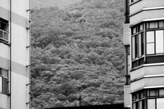 Beitou Urban (alex in bkny) Tags: taipei taiwan blackandwhite blackwhite bw urban landscape fujifilm xt20 iso800 200mm f48 12000sec