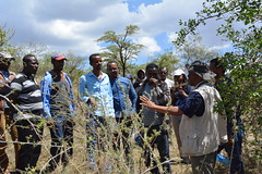 Joint Reflection, Learning and Monitoring Field Visits in Ethiopia