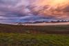 _MG_0005.0110.Mộc Châu.Sơn La (hoanglongphoto) Tags: asia asian vietnam northvietnam northwestvietnam northernvietnam landscape scenery vietnamlandscape vietnamscenery mocchaulandscape sunrise sky clouds mountain mist sierra canon canoneos5dmarkii tâybắc sơnla mộcchâu thịtrấnmộcchâu phongcảnh natue thiênnhiên bìnhminh bầutrời mây dãynúi sươngmù morningdew sươngsớm dawning dawninginmocchau bìnhminhmộcchâu lawn grass bãicỏ