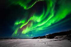 Aurora Borealis, Torneriver (bholmbom81) Tags: trees winter sky snow stars lights frozen arctic auroraborealis torneriver poikkijärvi bjornholmbom björnholmbom