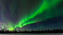 Aurora Borealis (bholmbom81) Tags: trees winter sky snow nature night stars landscape auroraborealis phenomen sautusjärvi bjornholmbom björnholmbom